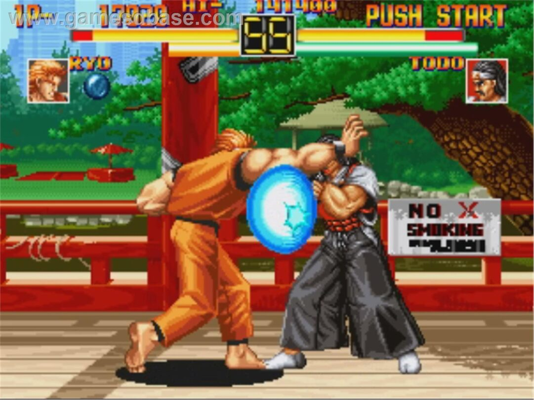 Art_of_Fighting_-_1994_-_SNK_Corporation