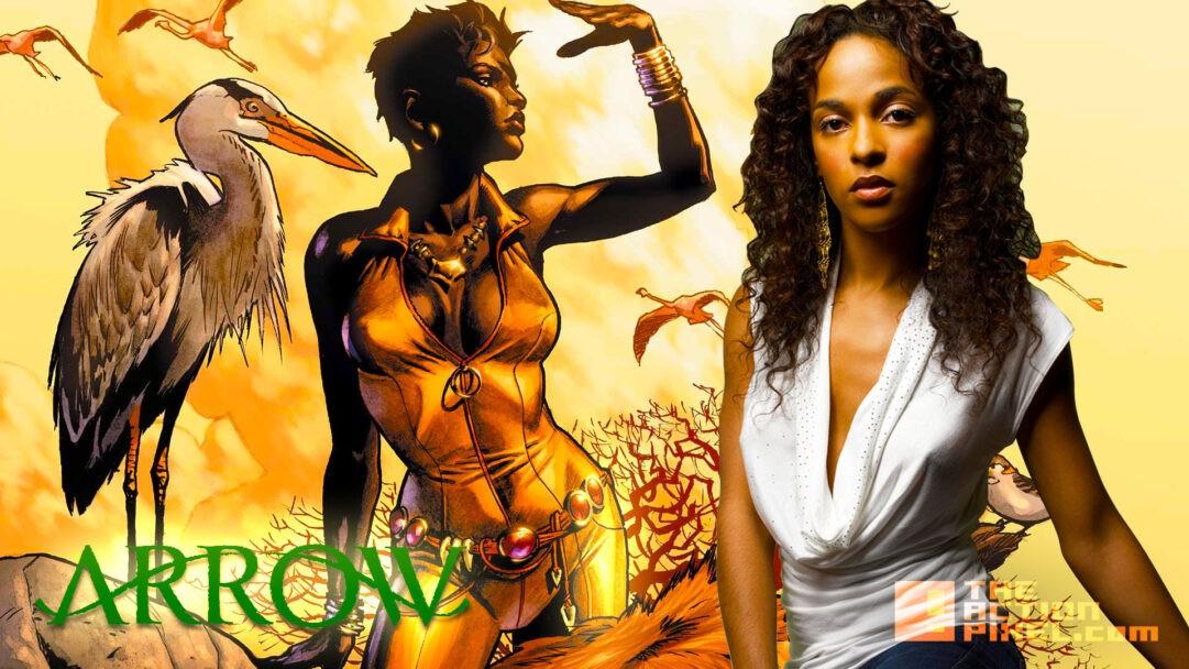 Megalyn Echikunwoke es Vixen