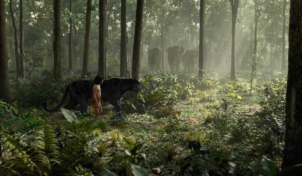 Una selva impresionante