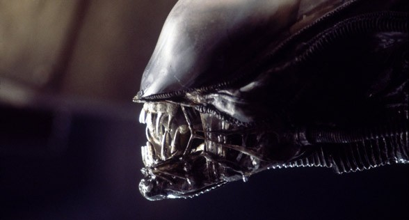 boca_alien