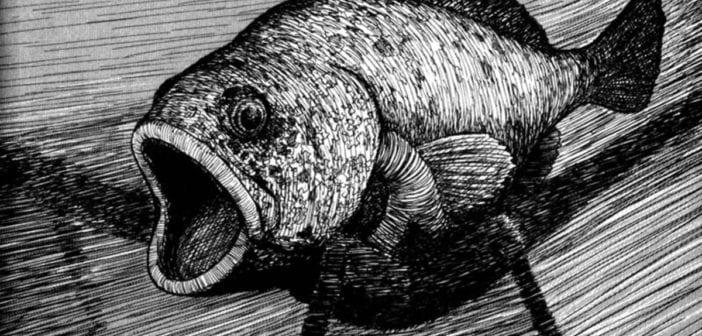 Gyo. Edición Integral: terror desde las profundidades del océano