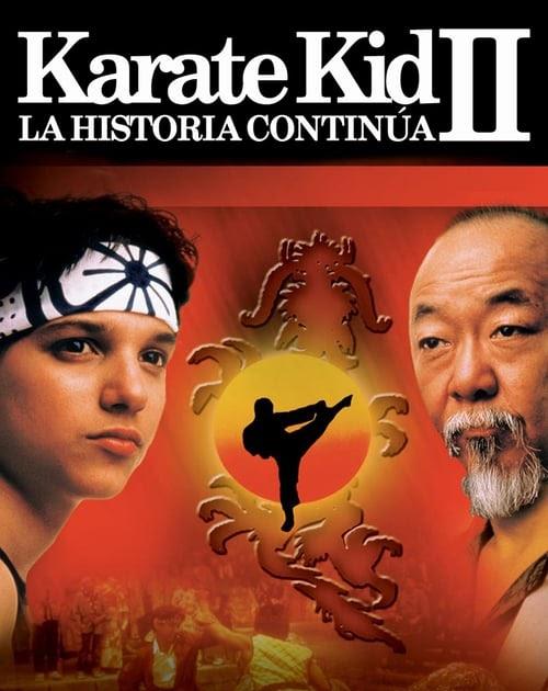 Las Películas De Karate Kid Ordenadas De Peor A Mejor Incluye Vídeo Lascosasquenoshacenfelices